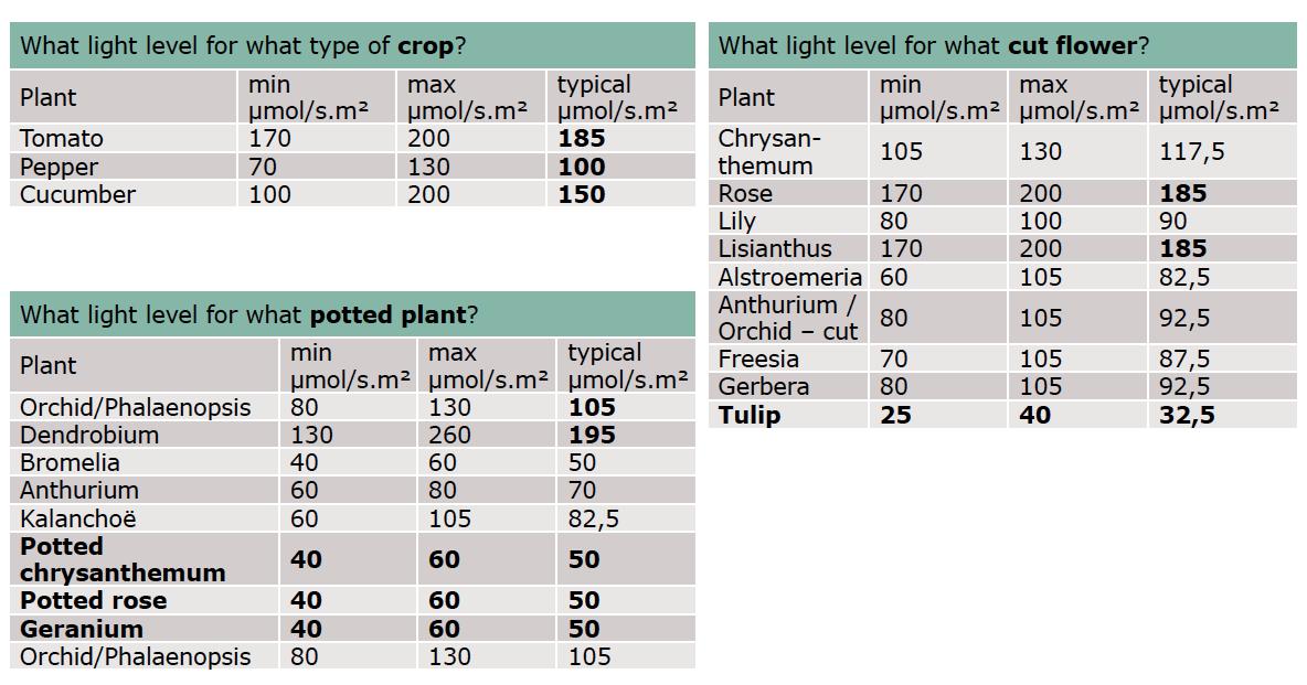 tableau des plantes besoin ppfd